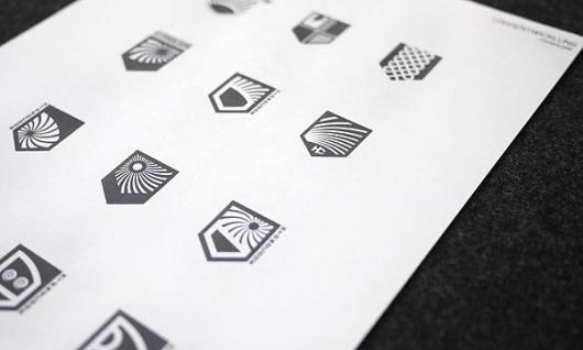 Looks like good Identity Portfolio by snagly #mark #logos #shields #system #identity