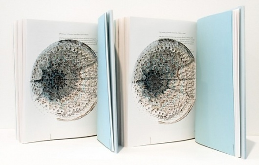 Book and paper sculptures by Noriko Ambe   Colossal