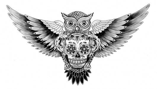 Owl&Skull - work - Says Who #draw #skull #tattoo #owl