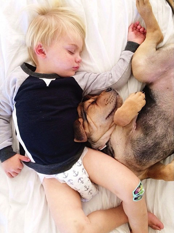 A Naptime Story with Dog and Baby 9 #photography #baby #dog