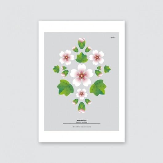 DailosPêrez diseño: ilustración #illustration