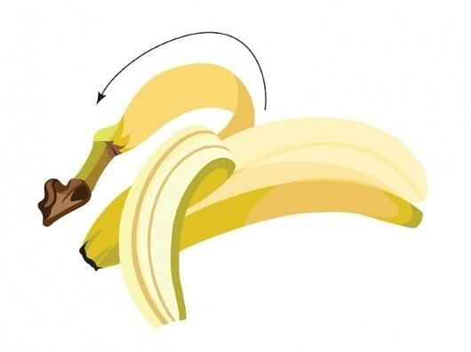 Cassandra Shearer #illustration #vector #banana #fruit