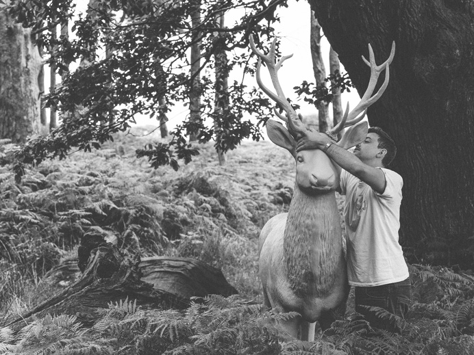 Stag in the Woods #art #blackandwhite #animal #installation #bluestag