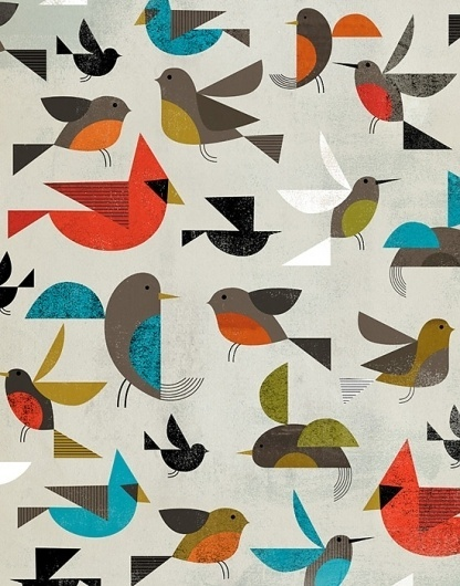 Birds | Dante Terzigni Illustration #terzigni #illustration #birds #dante