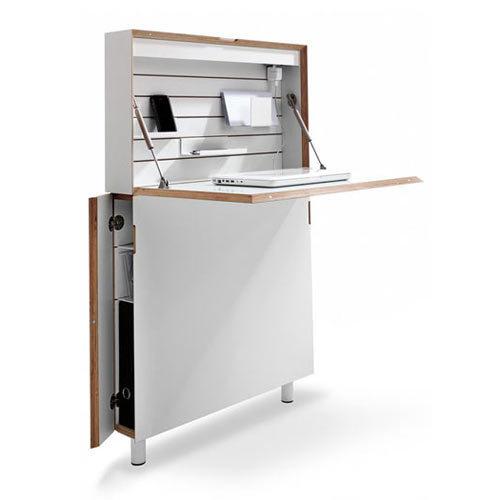 Flatmate Desk By Michael Hilgers For Müller Möbelwerkstätten Photo Station Laptop Living