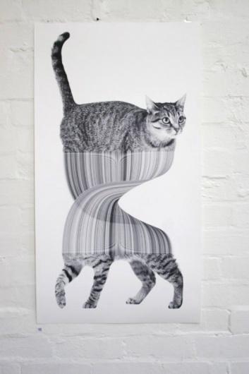 Goodbye Yellow Brick Road « Jonathan Zawada #graphics #illustration #design #poster