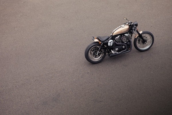 The Bald Terrier 1200 #cafe #motorcycle