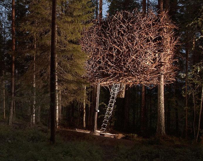 The Bird's Nest, Sweden #treehouse