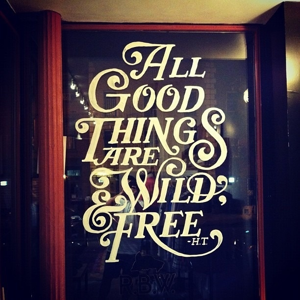 All good things are wild & free #lettering