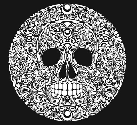 FFFFOUND! | Skulls - And there will be Unicorns #skull #white #black #and