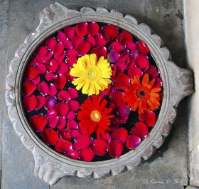 Floating Flower Pot
