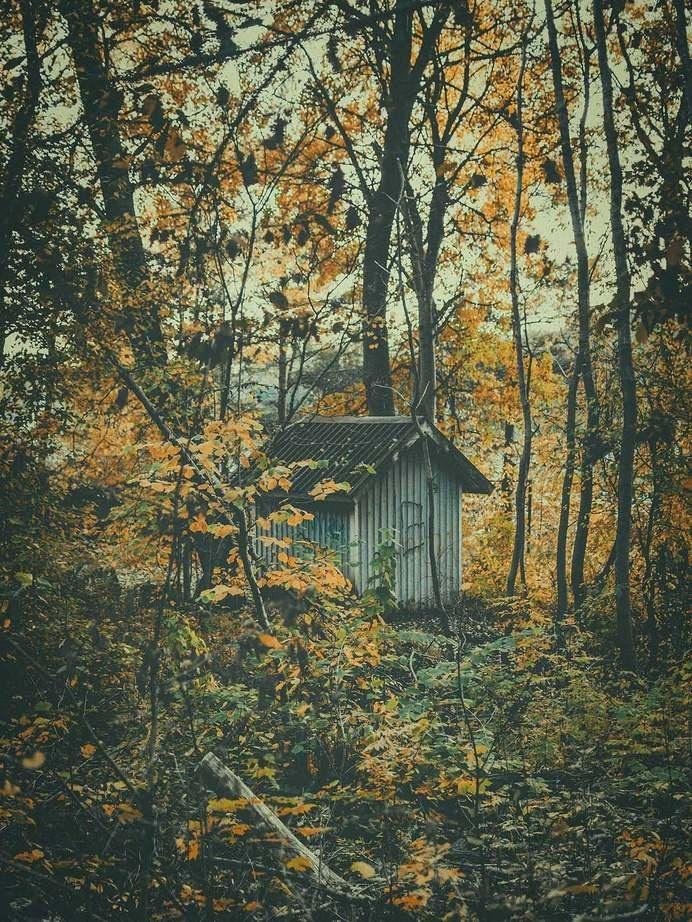 Photograph by Pale Grain