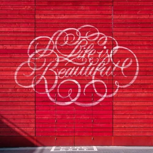 Life is Beautiful - 📷by @zellersamuel / @unsplash - #life #beautiful #flourishes #lettering #strengthinletters #goodtype #thedailytype #h