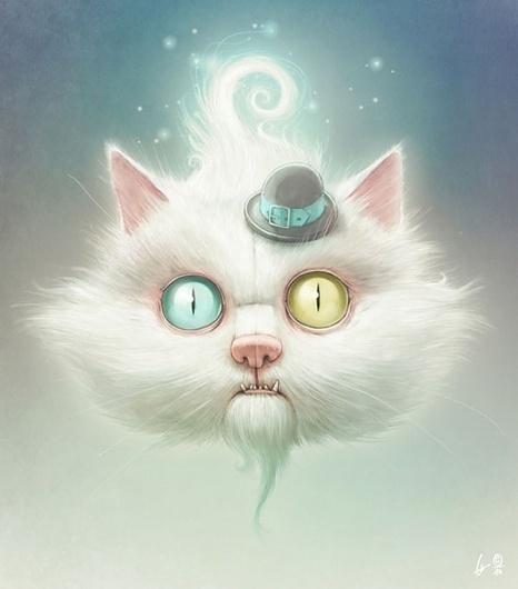Looks like good Illustrations by Lukas Brezak #eye #crazy #hat #cat