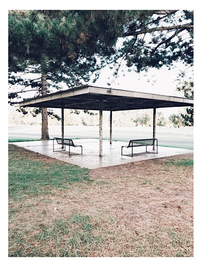 #rheinpark #cologne #BUGA1957 #vsco PHOTOGRAHIE © [ catrin mackowski ]