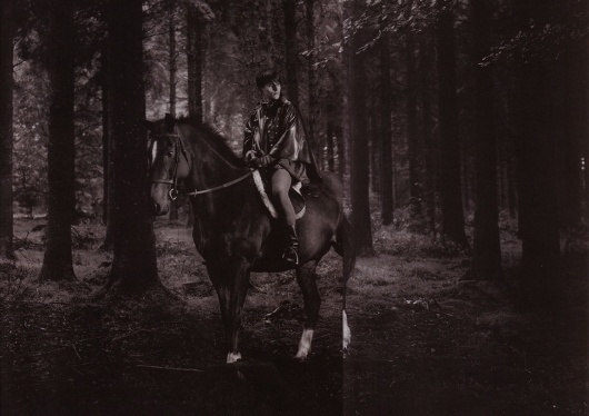 Dartmoor | Paranaiv / Are Sundnes #horse #slijper #man #forest #david