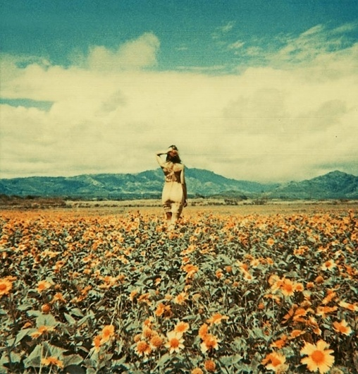 Neil Krug #field #sky #neil #krug #photography