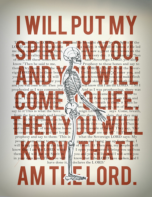 holy spirit project//003 #skeleton #red #rgb #ezekiel #graphic #anatomy #jesus #poster #bible #spirit #bones #holy