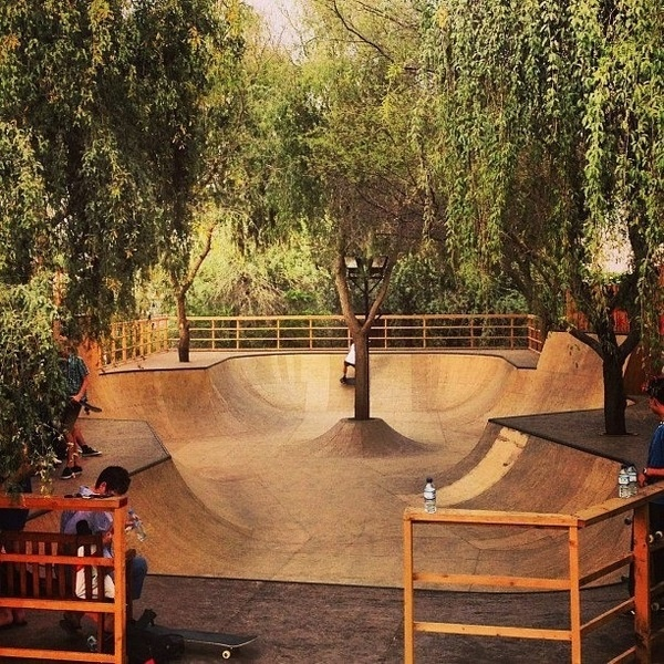 IMG_5622 #skatepark #bmx #photography #trees