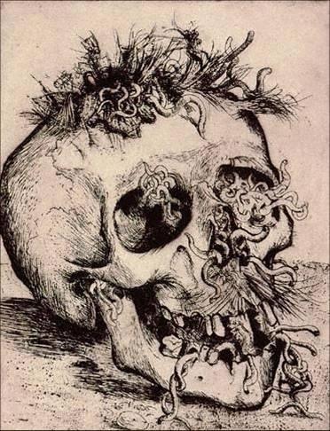 otto.jpg 372×486 pixels #skull #otto #dix