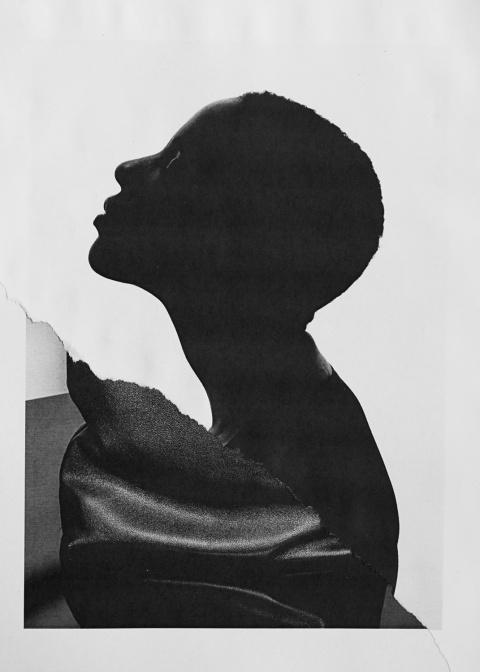 Ramon Haindl | PICDIT #collage #art