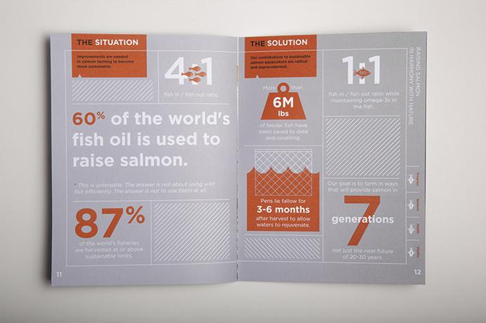 verlassoVerlasso Sustainability Brochure #print #brochure #grid #type #layout #spread #information #infographic #illustration