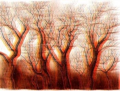 N O N E W S I S G O O D N E W S #illustration #tree