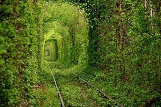tunnel-of-love-2%255B2%255D.jpg (790×525) #tunnel #kleven #ukraine