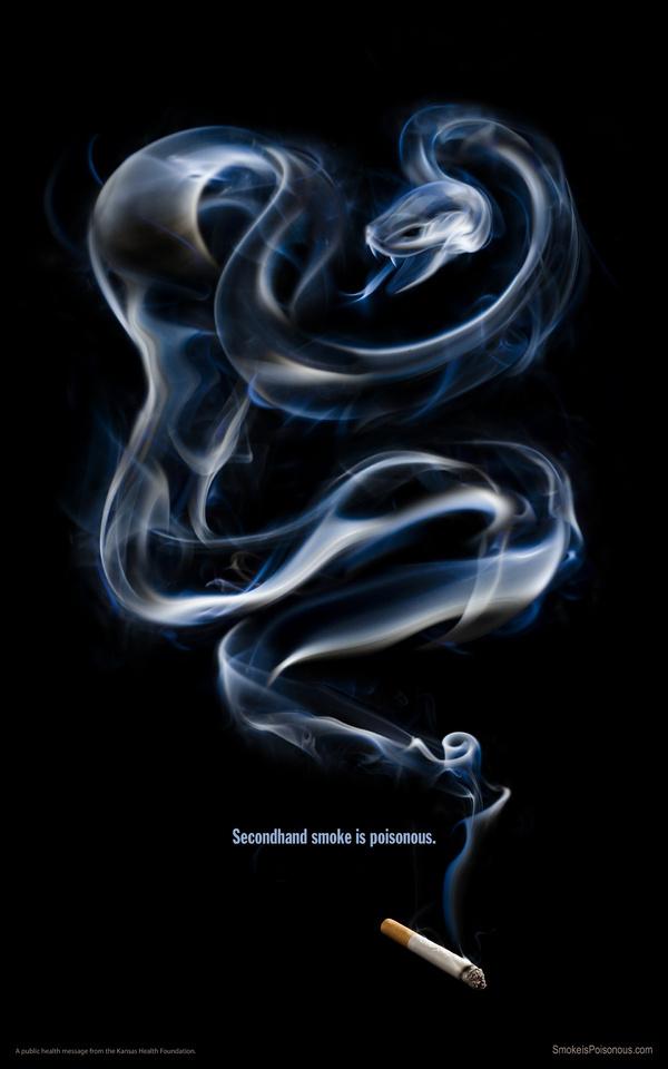 Smoke is Poisonous #cigarette #smoke #snake