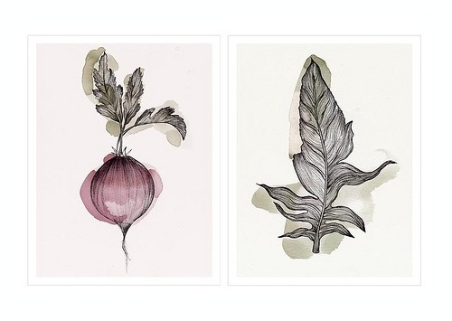 verónica ballart lilja #inspiration #illustration #ins #leaf