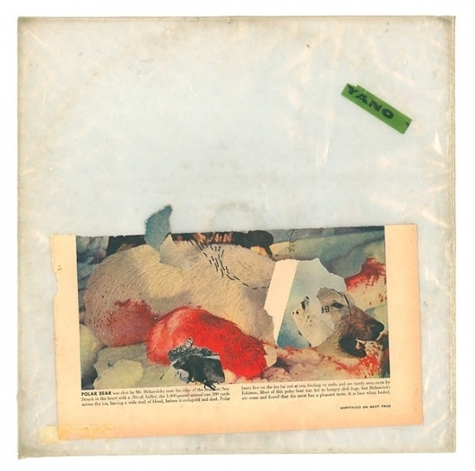 PolarBear.jpg (604×600) #album #nature #art #music #collage #paper
