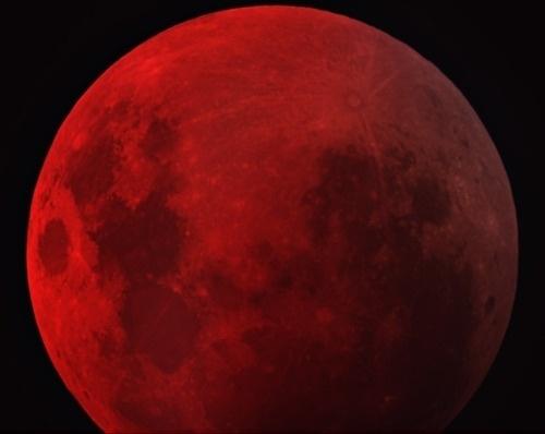 Sara Lindholm - n-a-s-a: Dark Lunar Eclipse Credit &... #lunar #eclipse #red #dark #moon