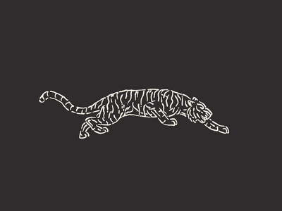 They called me Tiger Claw back in high school... #tiger #illustration #orange #classic #nature #animal