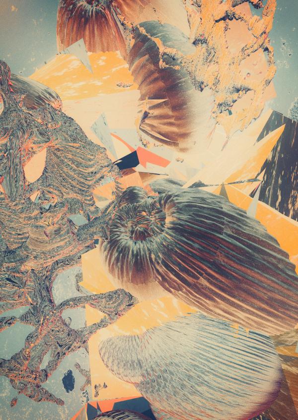 Metamorphosen III atelier olschinsky #olschinsky #design #graphic #collage