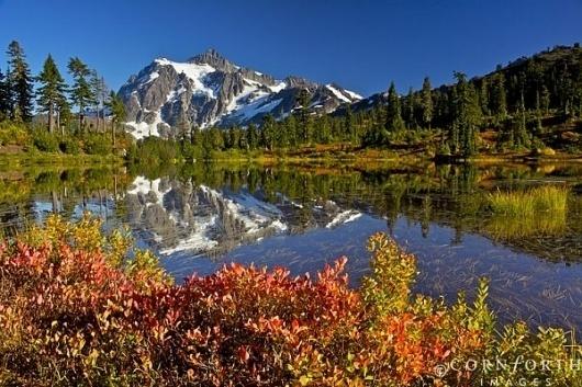 Nature Photography by Jon Cornforth » Creative Photography Blog #inspiration #wildlife #photography #nature