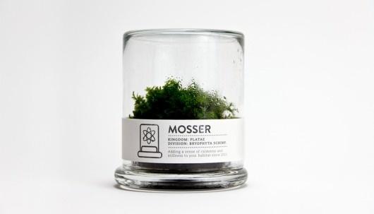 MOSSER #pictogram #mosser #icon #terrarium #logo #glass #brand #type #paper #moss #plant