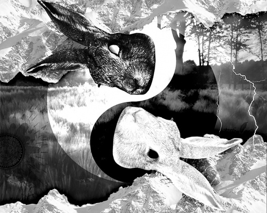 Lou Madhu #down #artwork #watership #digital #lou #madhu #rabbit #collage