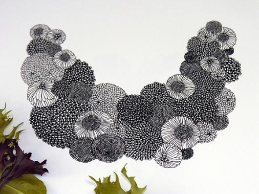Flora Illustrations on the Behance Network #illustration