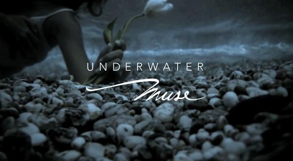 Underwater Muse on Behance #design #brand #logo #muse #underwater