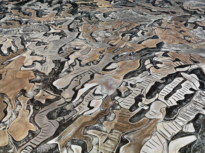 Dryland Farming #21 Monegros County, Aragon, Spain, 2010