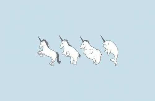 Sara Lindholm #illustration #unicorn #narval