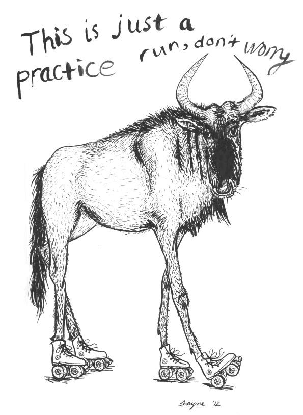 Wildebeest by @bec #illustration #animal #black #and #white #drawing #roller #skates