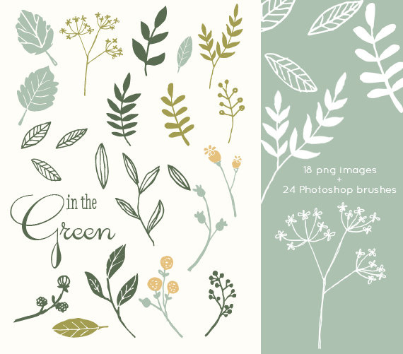 CLIP ART and Photoshop Brushes In The Green for
