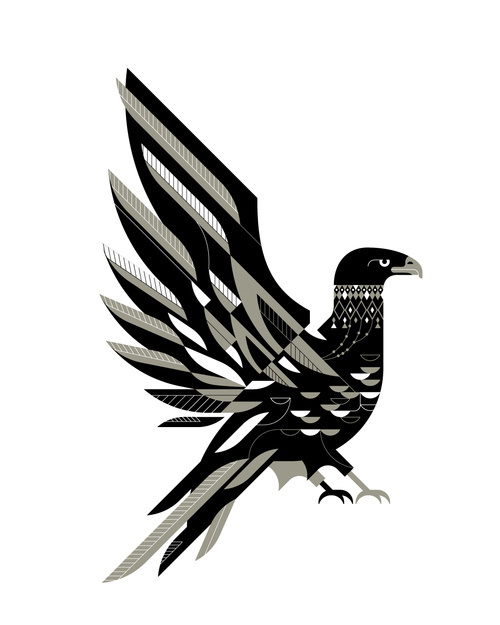 hawk 3b.jpg #illustration #vector #schlitz #danny