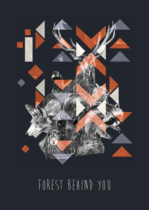 http://www.behance.net/gallery/Deep forestplaying card/10425295 #deer #fox #geometric #illustration #poster #animals #forest