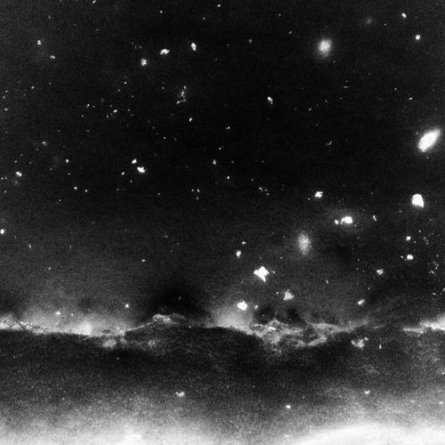 Wings of the Sea #stellar