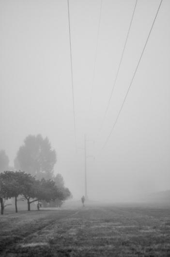 terrain #fog #park #galuzzi #photography #nate