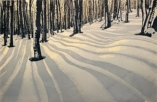 40 rovers #forest #snow #trees
