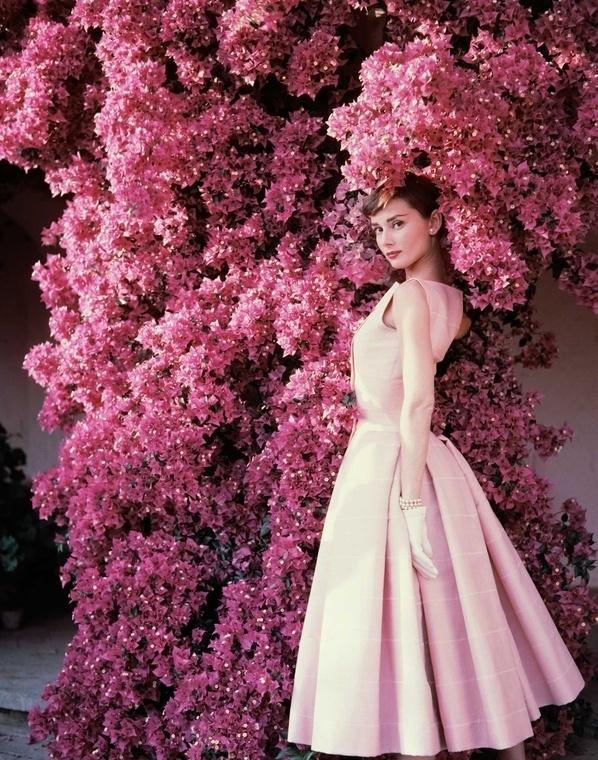 Norman Parkinson - Audrey Hepburn and bougainvillea - Photos - Photohab - Photographer's Portfolios #fashion #photography #inspiration