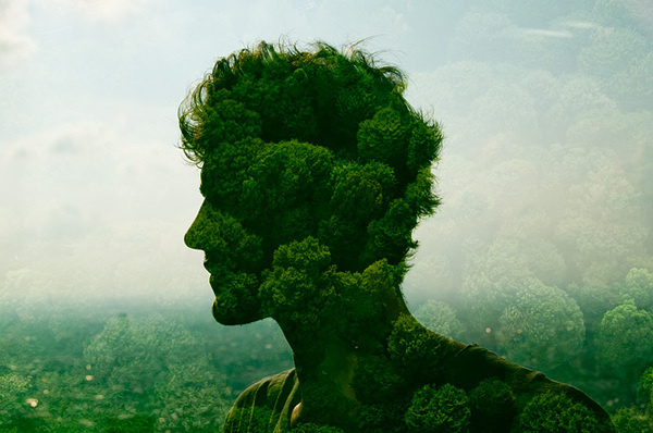 City Silhouettes Project by Jasper James #man #forest #silhouettes